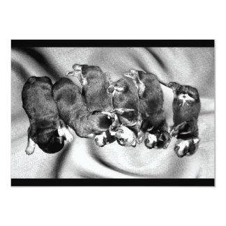 sleepyhead rottweiler puppies 11 cm x 16 cm invitation card