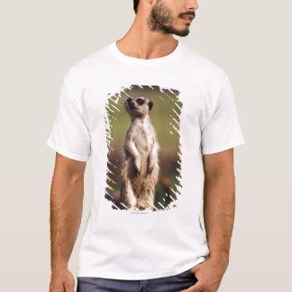 slender-tailed meerkat T-Shirt