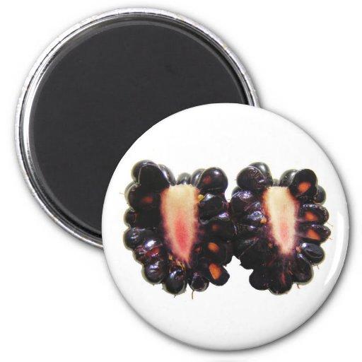 Sliced Blackberry ~ magnet