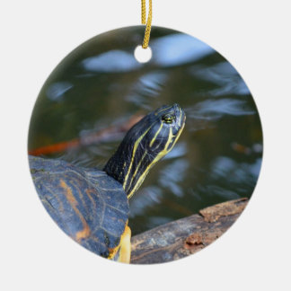 slider water turtle head out of shell round ceramic decoration