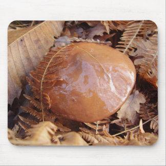Slippery Jack Mushroom Mouse Mat