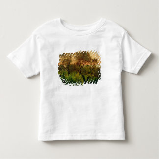 Slope with Olive Trees Toddler T-Shirt