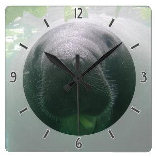 Sloppy Manatee Clock square
