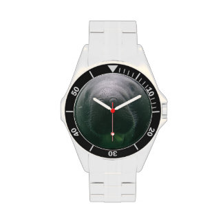 Sloppy Manatee Watch classic stainless