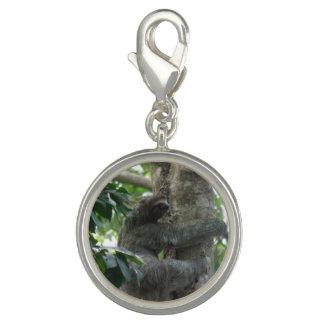 sloth-4.jpg bracelet