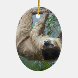 Sloth Ceramic Oval Decoration