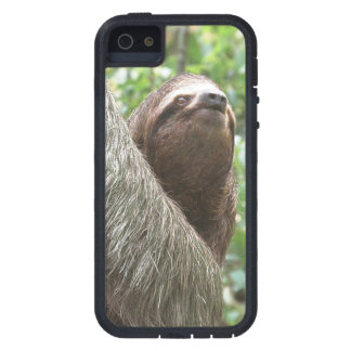 Sloth Climbing iPhone 5 Case