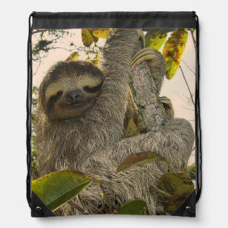 sloth drawstring bag