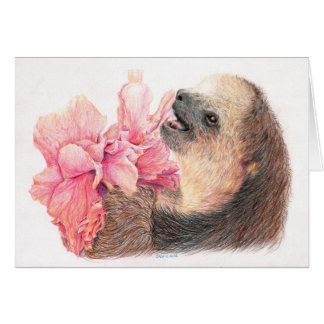 Sloth eating hibiscus flower card