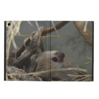 Sloth Hanging from a Branch iPad Air Covers