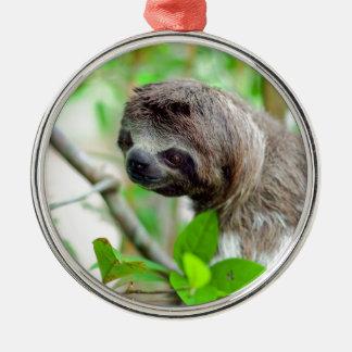 Sloth in tree Nicaragua Christmas Ornament