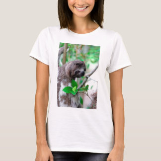 Sloth in tree Nicaragua T-Shirt