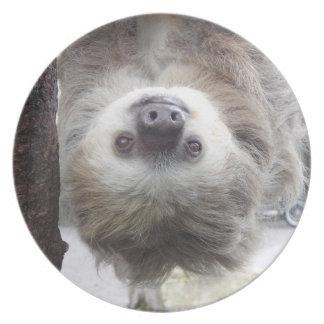 Sloth Melamine Plate