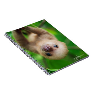 Sloth note book
