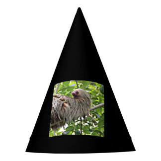 Sloth in party hat - photo#17