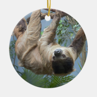 Sloth Photo Round Ceramic Decoration