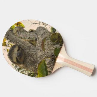sloth ping pong paddle