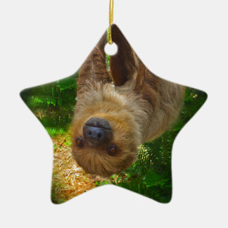 Sloth Rainforest Gifts Christmas Ornament