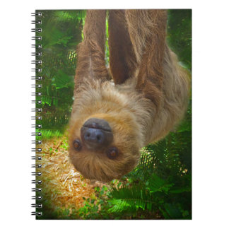 Sloth Rainforest Gifts Notebooks