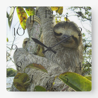 Sloth Up A Tree Square Wall Clock