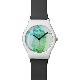 Sloth Watch