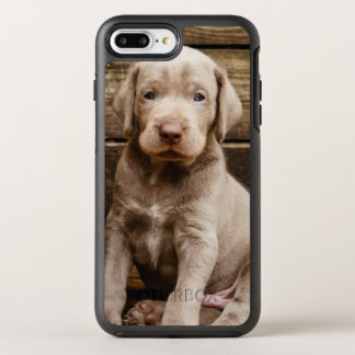 Slovakian Rough Haired Pointer Puppies OtterBox Symmetry iPhone 8 Plus/7 Plus Case