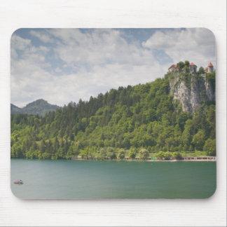 SLOVENIA, GORENJSKA, Bled: Bled Castle & Mouse Mat