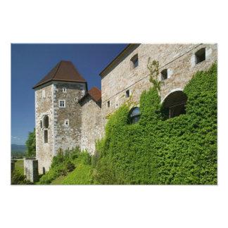 SLOVENIA, Ljubljana: Castle Hill / Ljubljana Art Photo