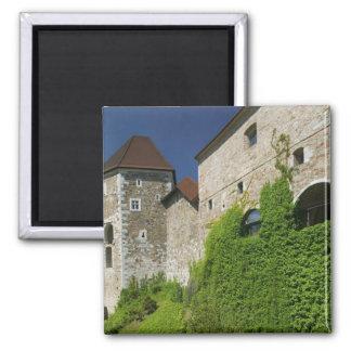 SLOVENIA, Ljubljana: Castle Hill / Ljubljana Square Magnet
