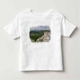 SLOVENIA, STAJERSKA Styria), Celje: Town View Toddler T-Shirt