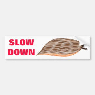 Slow Down Slug Bumper Sticker