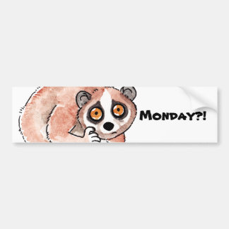 Slow Loris Bumper Sticker