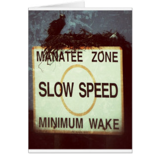 Slow speed! card
