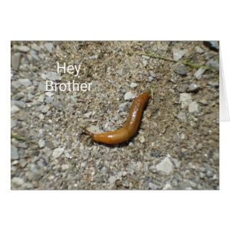 Slug on Cement Card