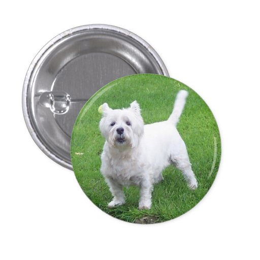 Small, 1¼ Inch Round Westie Button