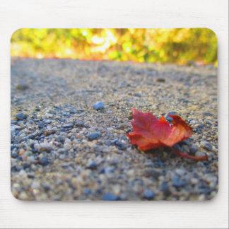Small Autumn Leaf Mouse Pad