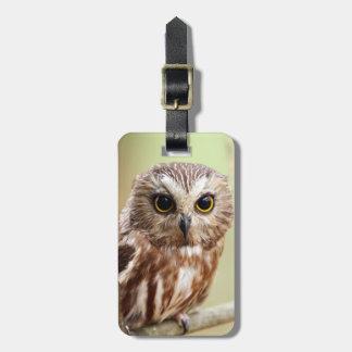 Small Baby Owl (Ontarios) Luggage Tag