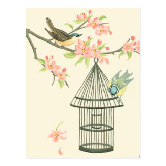 Small Birds Perched on a Branch and on a Birdcage Postcard