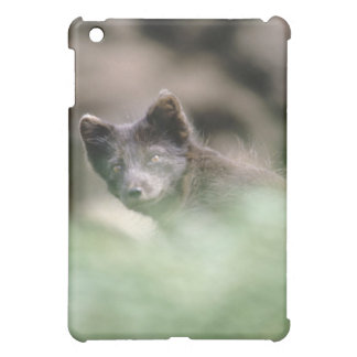 Small Black Wolf Case For The iPad Mini