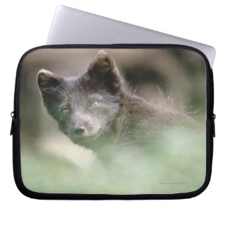 Small Black Wolf Laptop Sleeve