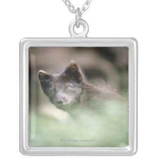 Small Black Wolf Silver Plated Necklace