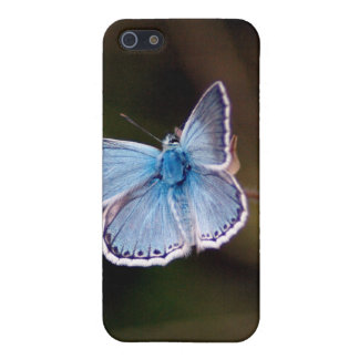 Small Blue Butterfly iPhone 4 Case
