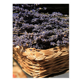 Small bouquets of lavender postcard