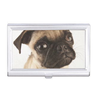 Small breed of dog with short muzzled face business card holder