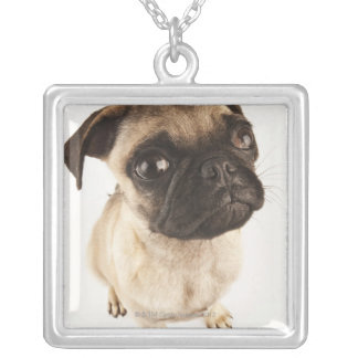 Small breed of dog with short muzzled face silver plated necklace