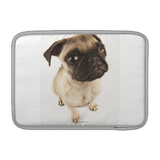 Small breed of dog with short muzzled face. sleeve for MacBook air