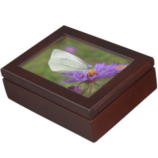Small Cabbage White Butterfly Memory Boxes
