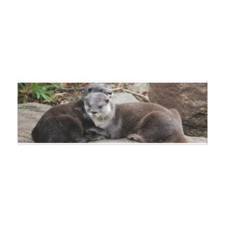 Small-clawed Otter Canvas