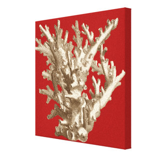 Small Coral in Red Canvas Print