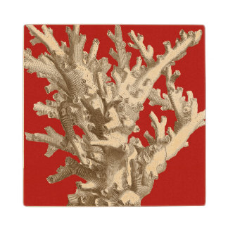 Small Coral in Red Wood Coaster